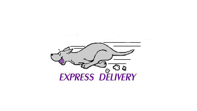 Consegna espressa emilia romagna