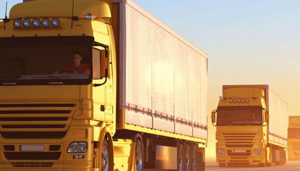 professionisti del trasporto merci